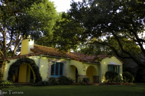 Dallas Gardening and Landscaping