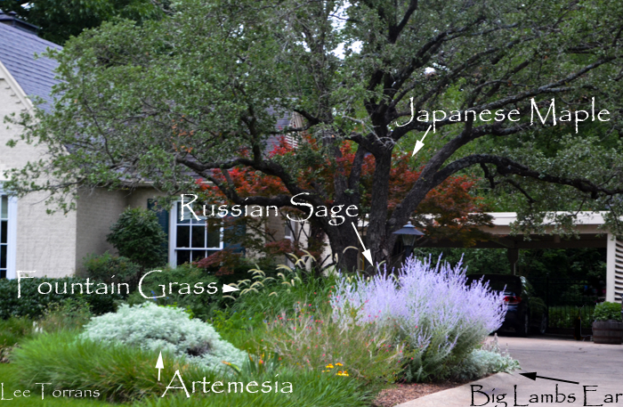 June_Pocket_Perennial_Garden_Dallas_Texas_Lee_Ann_Torrans