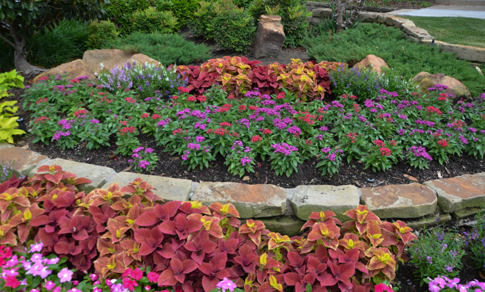 Flowering Pot and Annual Ideas for Plano Landscaping