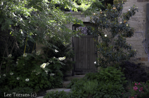 Dallas Landscape and Gardening Gates and Doors Lee Ann Torrans