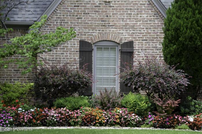 Dallas_Best_Landscaping_Design_Lee_Ann_Torrans_Dallas_Gardening-4