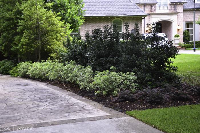 Dallas_Best_Landscaping_Lee_Ann_Torrans_Dallas_Gardening-2