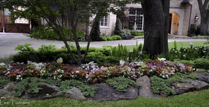 Dallas_Best_Landscaping_Lee_Ann_Torrans_Dallas_Gardening-3