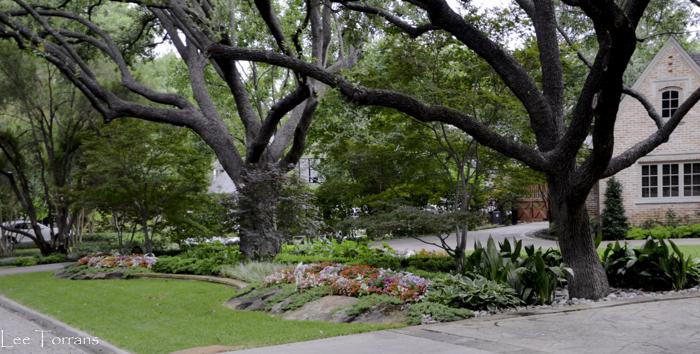 Dallas_Best_Landscaping_Lee_Ann_Torrans_Dallas_Gardening