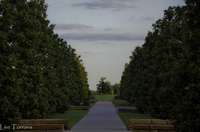 University_Texas_Dallas_June_2014_Lee_Ann_Torrans-19
