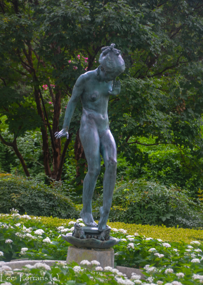 Woodland_Nymph_Dallas_Arboretum_Lee_Ann_Torrans-2