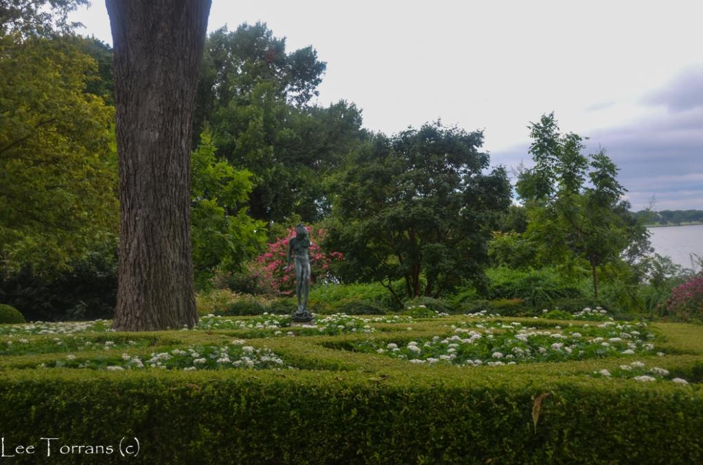 Woodland_Nymph_Dallas_Arboretum_Lee_Ann_Torrans-7