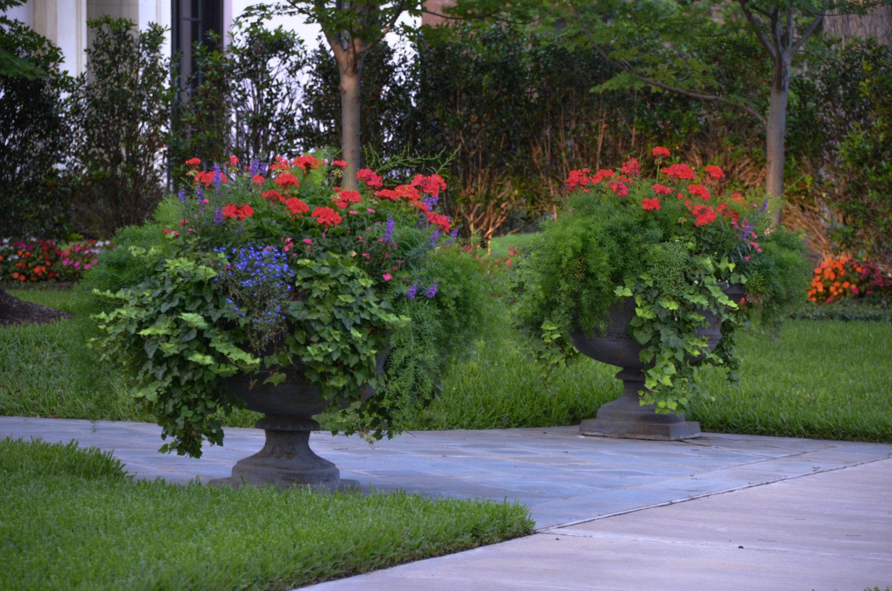 Container gardening lee ann torrans gardening for Garden design landscaping farmers branch
