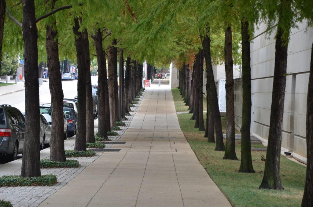 DMA walk of cypress