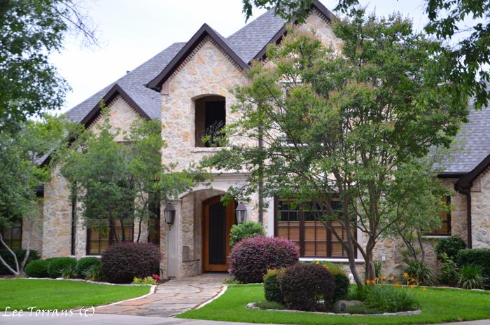 Oak-Tree-Landscape-Design-Texas-Dallas-Barberry-